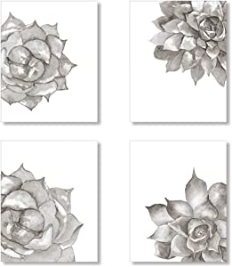 Black and White Succulent Plant Art Prints, Botanical Wall Art Set of 4 Unframed 8x10 inches