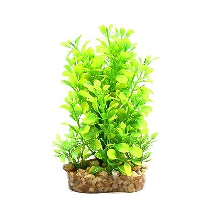 Amazon Com Uxcell Yellow Green Plastic Plant Aquarium Terrarium