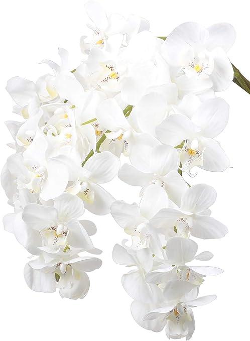 Amazon Com Ivalue 28 Artificial Orchid Flower Stem Plants Pack