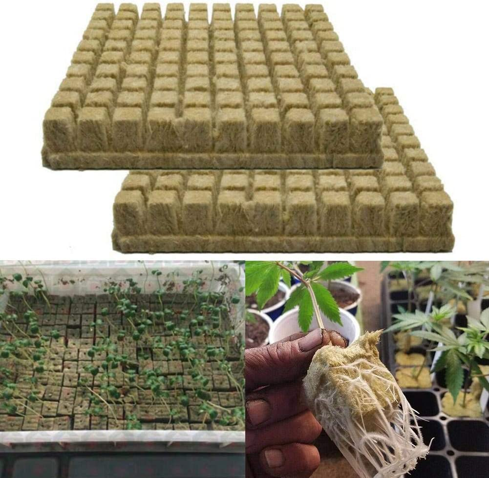 50 Piezas de Cubo de Lana de Roca Lana de Roca Alfombra de Cultivo de Lana de Roca Medios de Cultivo hidropónico Medio de Crecimiento sin Fondo para un Crecimiento vigoroso de Las Plantas 25x25x40 mm