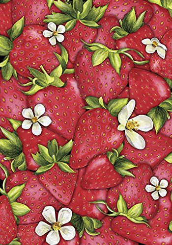 (Toland Home Garden Strawberry Collage 28 x 40 Inch Decorative Red Summer Fruit Berry Flower House Flag)
