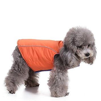 RFVBNM Invierno Caliente Mascota Perro Abrigo Chaqueta Impermeable Ropa para Perros pequeños Medio Perro Grande Ropa Cachorro, Naranja L: Amazon.es: ...