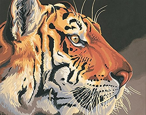 Colour Talk Diy oil painting, paint by number kit - Tiger animal 1620 inch.