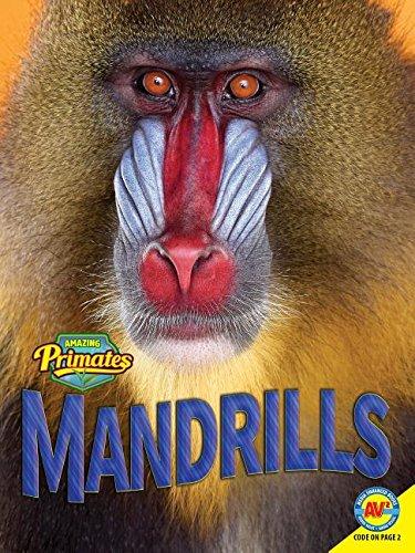 Mandrills (Amazing Primates) PDF
