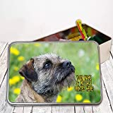 Personalised Border Terrier Dog St320 Sewing Tin Kit ~ Needles/buttons/Cotton ~ Storage Box Gift by Krafty Gifts