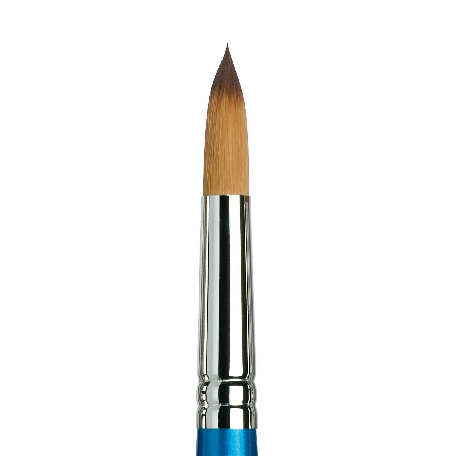 Winsor & Newton Brush, Wood, Transparent, No 16 -. 11.5 mm, Round - Brush, Short Handle by Winsor & Newton