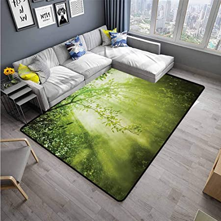 Alfombra para Sala de Estar, Color Verde: Amazon.es: Hogar