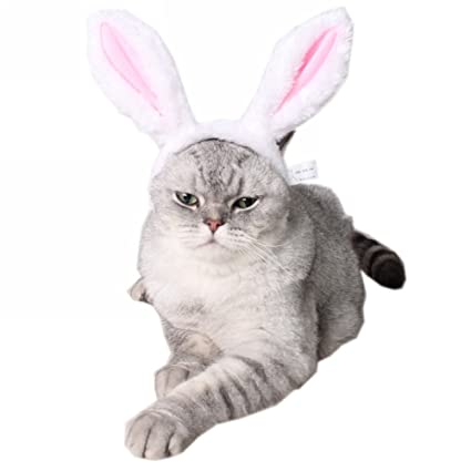 Pet Products High Quality Pet Cat Dog White Rabbit Ears Hat Ear White Rabbit White Bear Styling Cap Cute Sell Cute Photo Pet Supplies