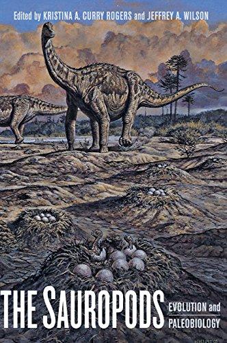 Sauropod Dinosaurs - The Sauropods: Evolution and Paleobiology