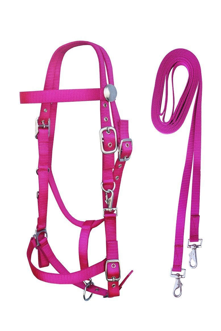 PRORIDER Horse Western BridleナイロンBrowband Headstall with Reins 60111 Cob Size マゼンダ B07DJZ8TX8