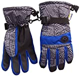 N'Ice Caps Kids Thinsulate and Waterproof Geo Lines Print Ski Gloves (10-12yrs, Royal/Grey)
