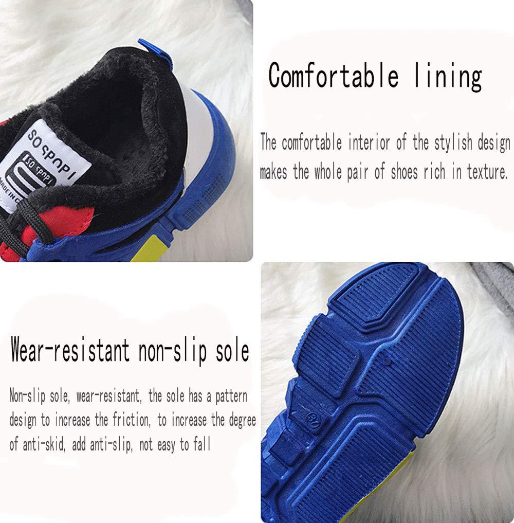 952cabf6c90607 Amazon.com  Gyqjs Women s Sneakers