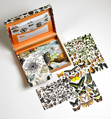Natural History: Letter Writing Set / Briefpapier Set / Set de Correspondence (PEPIN LETTER WRITING SETS)