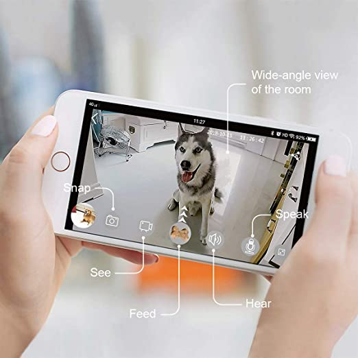 Petalk AI Dog Camera Treat Dispenser, Cámara remota para Mascotas WiFi con Audio bidireccional y visión Nocturna: Amazon.es: Hogar
