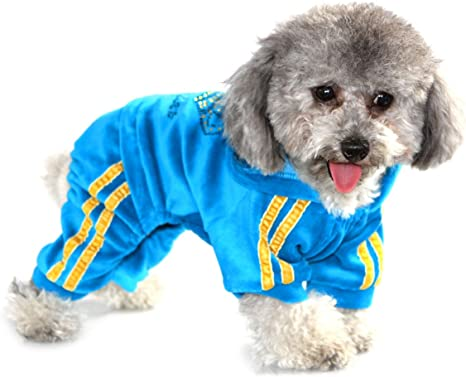 SELMAI Dog Pullover Sweatshirt for Dogs Small Medium Smiling Sweater Soft Fleece Warm Jumper for Cat Dachshund Unsex Winter Autumn Cold Weather Pet Clothing Puppy Apparel Walking Outdoor Blue S