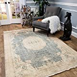 Maxy Home Serica Contemporary Sage Medallion 2 ft. 7 in. x 4 ft. 11 in. Area Rug