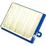 Electrolux aspirateur filtre lavable 9001951194 Véritable