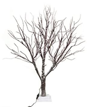 Amazon.com: 3' LED Lighted Frosted Brown Twig Tree Table Top Decoration -  Warm Clear Lights: Home Improvement