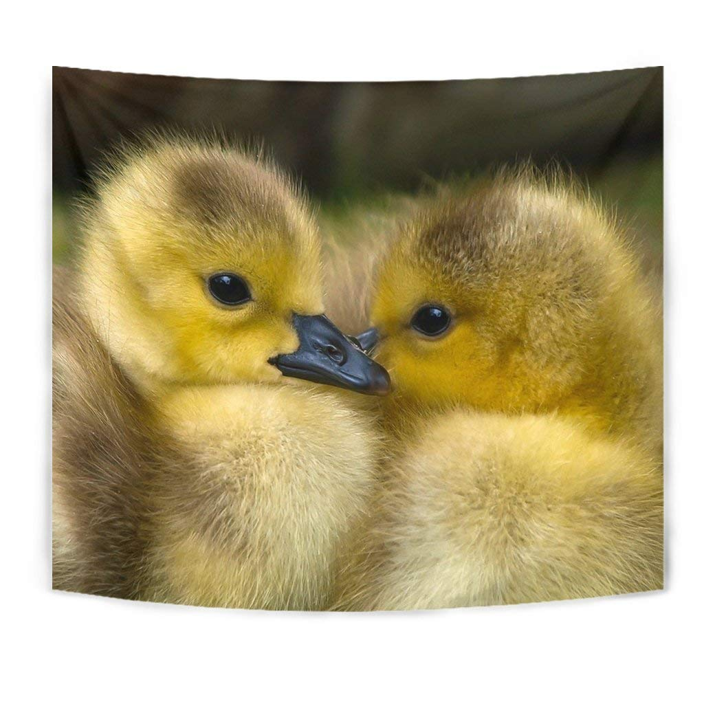 Cute Baby Duck Bird Print Tapestry by Breedink