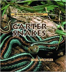 Garter Snakes (The Really Wild Life of Snakes): Doug