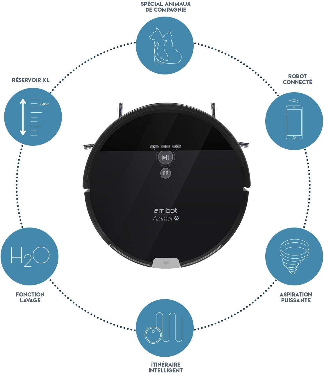 AMIBOT Animal XL H2O - Robot Aspirador y friegasuelos: Amazon.es ...