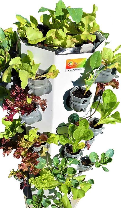 i3-MAX jardín Vertical: Amazon.es: Jardín