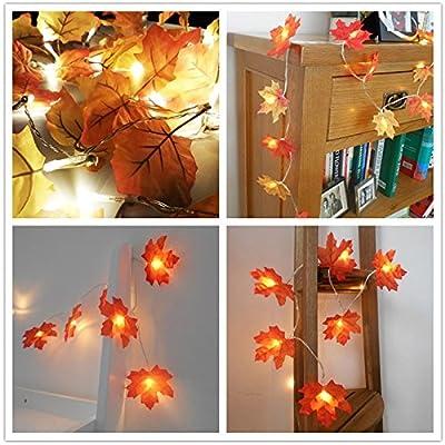 Lanlan LED String Lights LED String Lights Maple Leaf Battery Box Night Lamp Garden Home Party Bar Decoration
