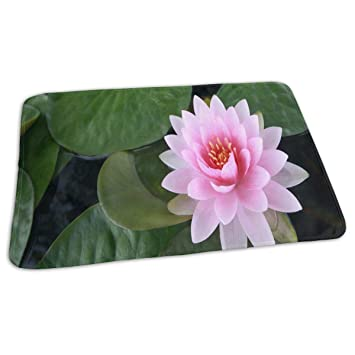 Amazoncom Changing Pad Most Beautiful Pink Lotus Flower Baby
