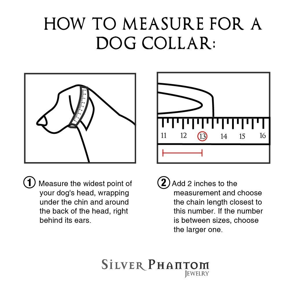 Heavy Duty Choke Cuban Chain Dog Collar for Large Dogs - 20mm XL Extra Wide, Strong Steel Metal Links for Big Breeds - Rottweiler, Pitbull, Mastiff, Cane Corso, Doberman, Great Dane - Silver, 20 Inch by Silver Phantom Jewelry