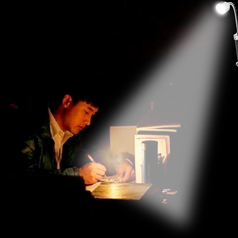 2pcs Port/áTil Magn/éTico 360 Grado Ajustable Llev/ó L/áMpara de Luz con 9 LED para Barbacoa Barbacoa Parrilla Al Aire Libre Accesorios de Parrilla Herramientas