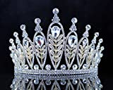 Janefashions Elegant Floral Clear Crystal Rhinestone Tiara Crown Bridal Prom Pageant T11885 Gold