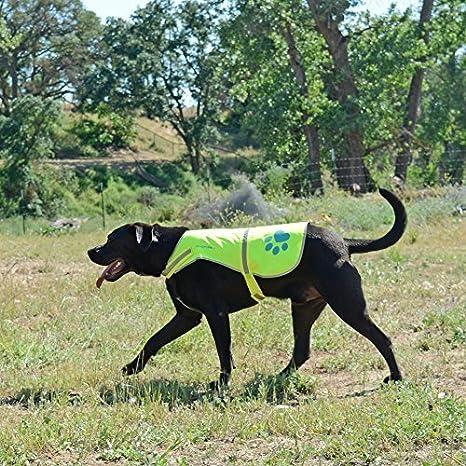 SafetyPUP XD Cane Riflettente Vest Dimensioni per Adattarsi Cani 14 libbre a 130 lbs Rosa mezzi