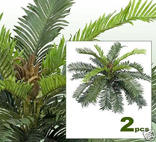 TWO 24'' Cycas Palm Artificial Tree Silk Plants 020 by Black Decor Home