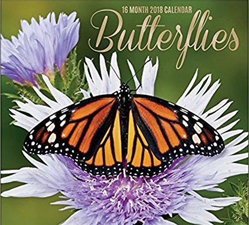 Butterfly Calendar - Butterflies 16-Month 2018 Calendar