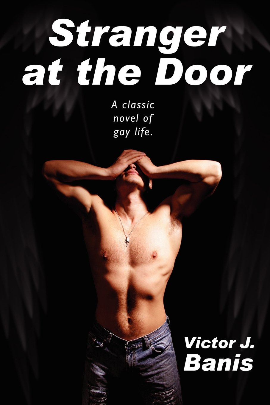 Read Online Stranger at the Door pdf epub