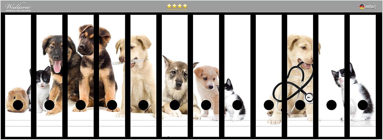 Katzen Hunde Hamster K/üken I in Premiumqualit/ät Gr/ö/ße 72 x 30 cm passend f/ür 12 breite Ordnerr/ücken Wallario Ordnerr/ücken Sticker S/ü/ße Haustiere