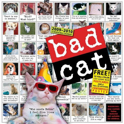 Bad Cat Wall Calendar 2010
