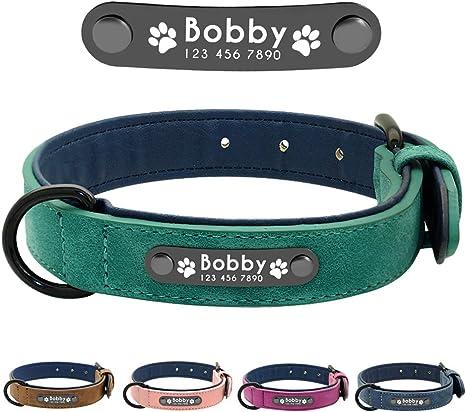 Didog - Collar de piel suave acolchada personalizable para perro ...