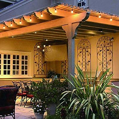 Guirnaldas Luces Exterior 15 metros, Bomcosy S14 Cadena de Luz Exteriores Cadena de Bombillas con 15+1 LED Bombillas Perefcto para Fiesta Boda Jardín Patio Cafe: Amazon.es: Iluminación