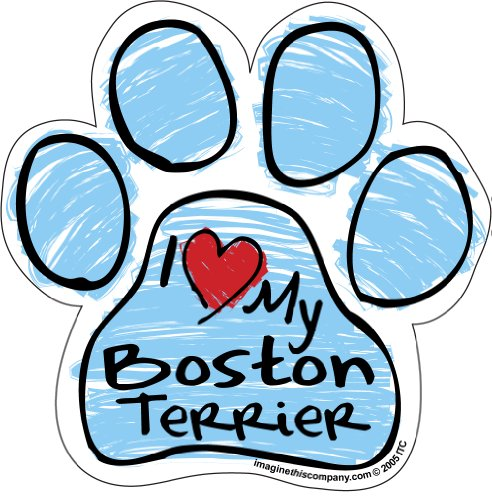 (Imagine This Scribble Paw Magnet, Boston Terrier)
