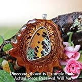 Sunset Moth Butterfly Wing Third Eye Pinecone Pendant
