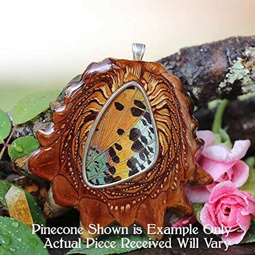 Sunset Pinecones - Sunset Moth Butterfly Wing Third Eye Pinecone Pendant