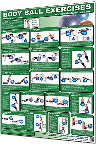 Productive Fitness Laminated Fitness Poster - Body Ball Exercises (Upper Body / Lower Body) - 24