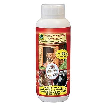 Insecticida Concentrada Piretroide MondoVerde 500 ml: Amazon.es: Deportes y aire libre