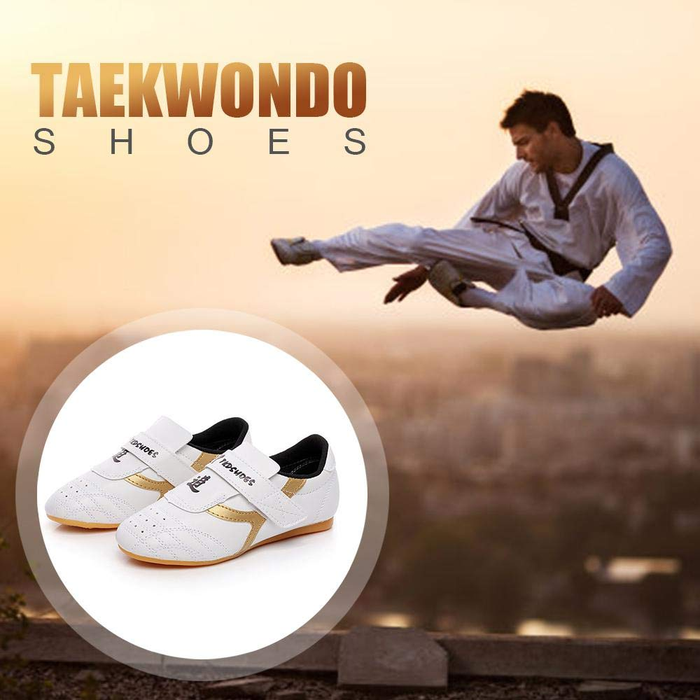 Karate Kung Fu e Taichi Dimensioni Intere per Bambini Uomini Donne Volwco Unisex Traspirante Taekwondo Scarpe Classico Leggero PU Martial Arts Sneaker con Una Borsa Eco per Taekwondo Boxe