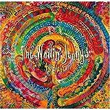 The Wailin' Jennys 40 Days