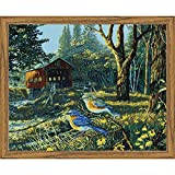 Plaid:Craft Sleepy Hollow Birds Paint by Number Kit 16''X20'', Multicolor