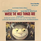 Where the Wild Things Are, Op. 20, Scene 9: MaxS Room