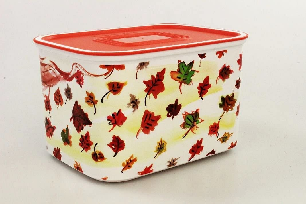 Tupperware Quadro color blanco y rojo 1,3 L Recipiente herm/ético