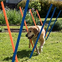 Heavy-Duty Plastic Agility Weave Pole Set (Contains 12 Brightly Coloured Poles with Metal Tips) - Great as Part of a Varied Fitness Programme for your Pet